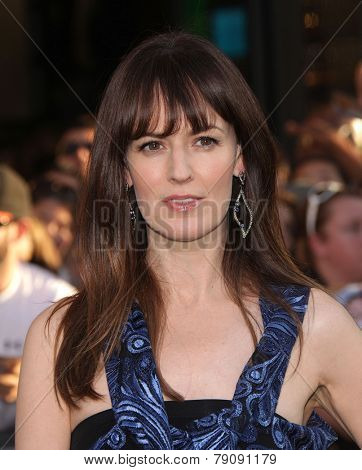 LOS ANGELES - AUG 06:  Rosemarie DeWitt arrives to