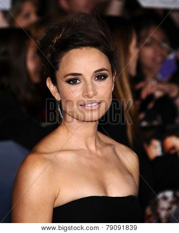 LOS ANGELES - NOV 11:  Mia Maestro arrives to the