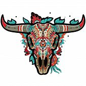 picture of herbivore animal  - Buffalo Sugar Mexican Skull - JPG