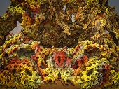 stock photo of mandelbrot  - By computer generated surreal 3d mandelbrot fractal - JPG