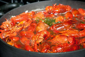 stock photo of crawdads  - crayfish spiced Louisiana style being cooked in a large pot - JPG