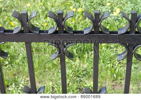 Wrought Iron Fence In Park