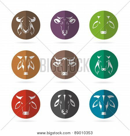 Vector Group Of Cow Face In The Circle On White Background