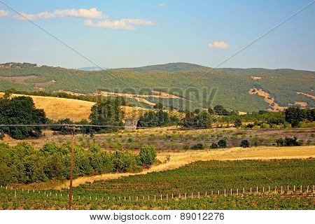 Cultivated Fields In Greece