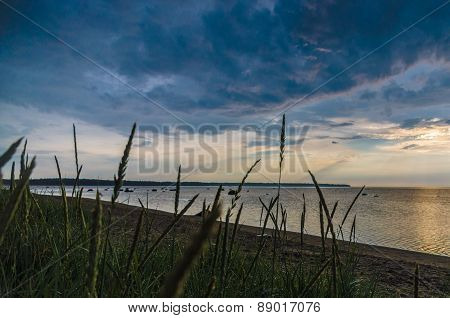 Coastline With Tall Dry Grass At Sunset