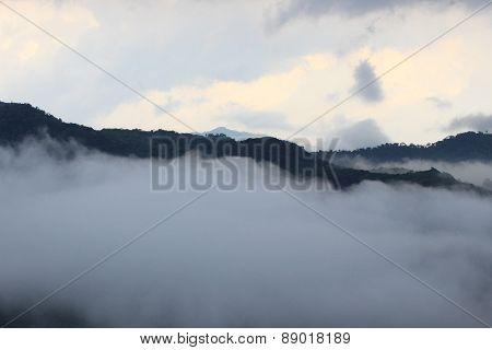 Munnar Raja mala hills