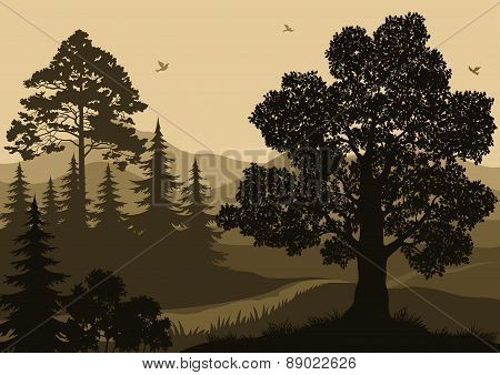 Landscape, Trees, Birds and Mountains