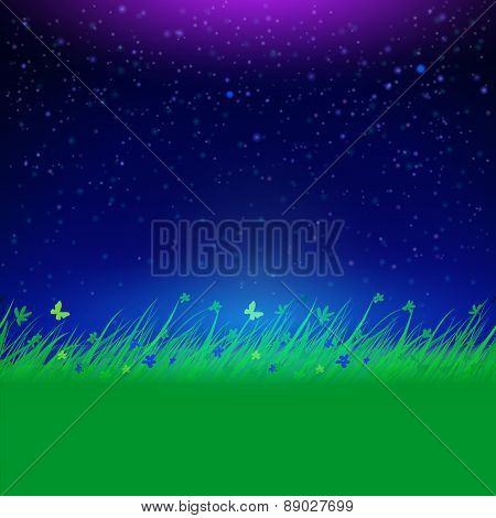 Night Sky With Grass Frame For Your Text