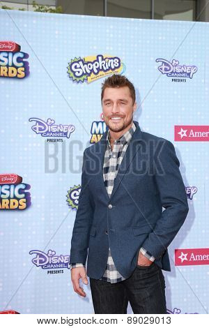 LOS ANGELES - APR 25:  Chris Soules at the Radio DIsney Music Awards 2015 at the Nokia Theater on April 25, 2015 in Los Angeles, CA
