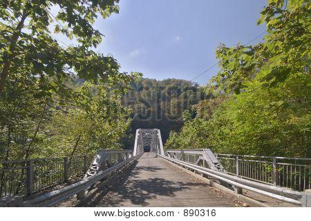 Wooden Floor Bridge