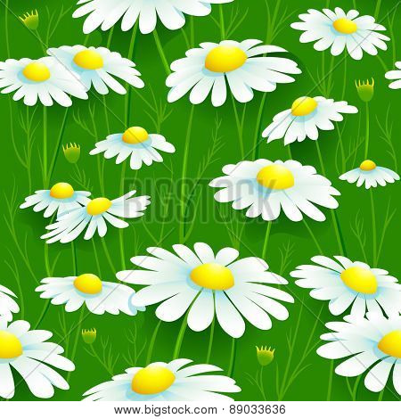 Seamless summer chamomile meadow pattern
