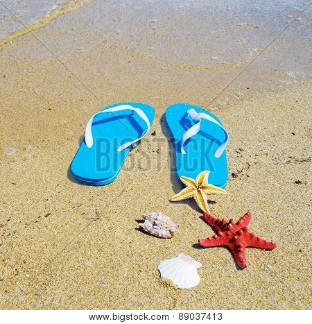 Flip Flops And Starfish By The Sea