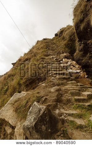 stone and rocky path