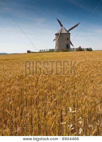 Wheat Field And Windmill