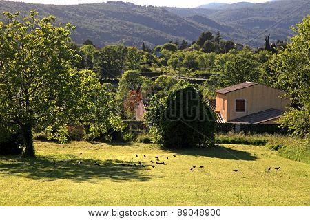 Rural Landscape, Provence, France