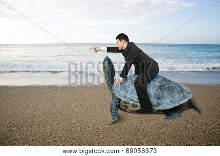 Businessman Riding Turtle And Indicating With Finger At Sand Beach