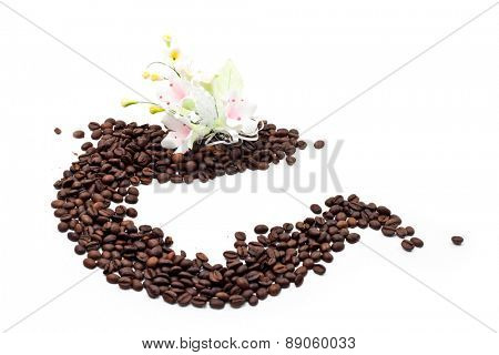 Coffee Seed with Flower over White
