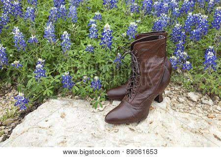 Old Fashioned Ladies' Shoes With Texas Bluebonnets