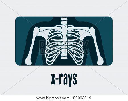 medical dsign over  white background vector illustration
