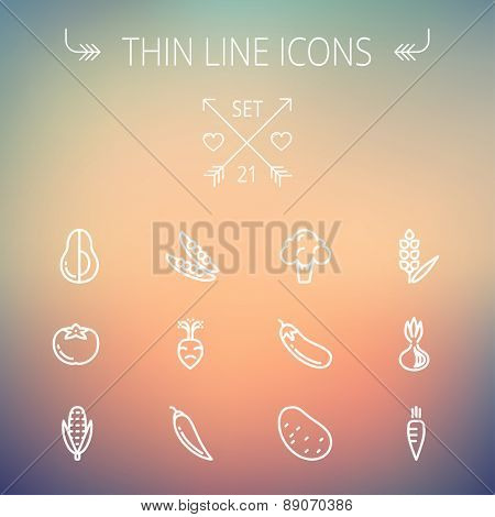 Food and drink thin line icon set for web and mobile. Set includes-beans, eggplant, potato, cauliflower, turnip, corn, avocado, carrot  icons. Modern minimalistic flat design. Vector white icon on