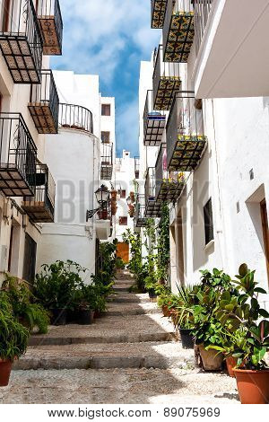 Beautiful street with white houses and flowers in Valencia.