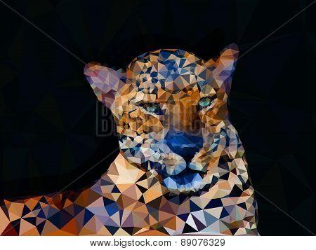 Low Poly Geometric Of Leopard