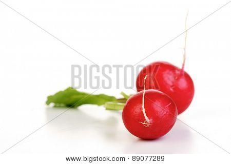 Close-up of radish on white background