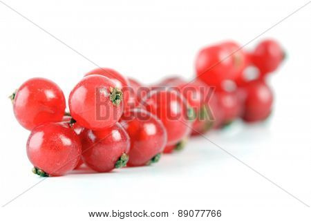 Studio shot of redcurrats on white background