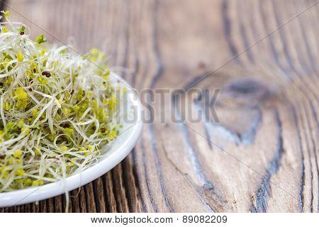 Some Fresh Broccoli Sprouts