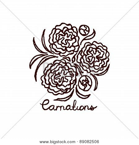 Handsketched bouquet of carnations