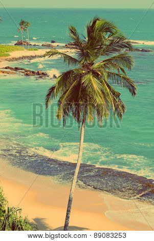 beautiful tropical beach landscape with palm - vintage retro style