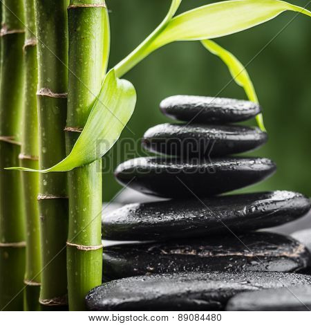 zen basalt stones and bamboo (focus on the bamboo leaf)