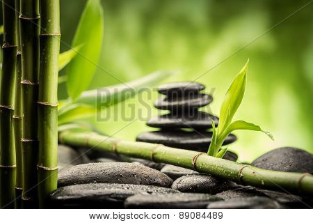 zen basalt stones and bamboo ( focus on the bamboo leaf )