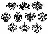 picture of dainty  - Retro ornamental floral elements of black flowers with dainty inflorescences and lush foliage isolated on white background - JPG