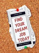 Постер, плакат: Dream Job