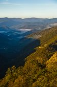 picture of serbia  - Foggy valley at autumn sunrise - JPG
