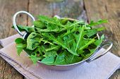 picture of quail  - dandelion leaves and quail eggs for vegetarian salads - JPG