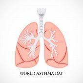 image of asthma  - illustration of a lungs for World Asthma Day in white background - JPG