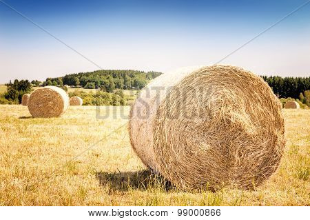 Golden Hay Bales At Agricultural Field