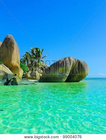 Shore Stones Exotic