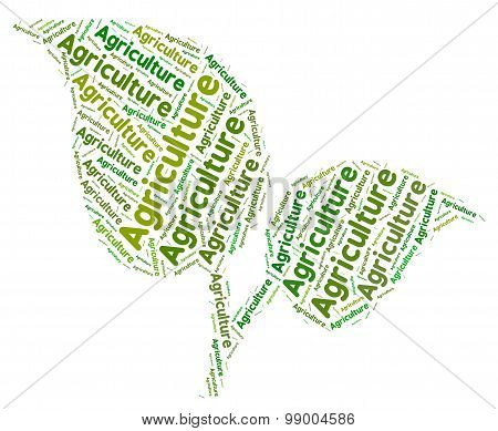 Agriculture Word Represents Cultivates Farming And Farm