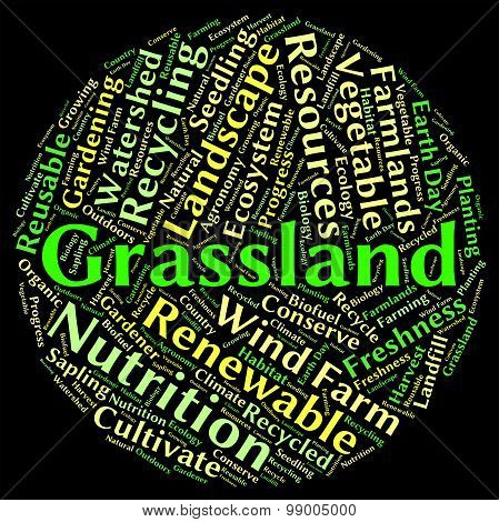 Grassland Word Means Grasslands Grassy And Field