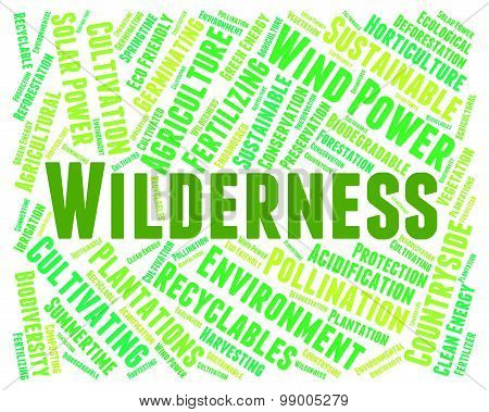 Wilderness Word Indicates Uncultivated Land And Area