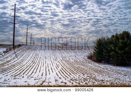 Corn Rows, Power Lines, Winter