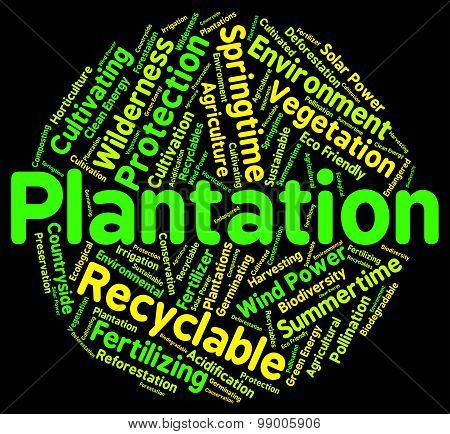 Plantation Word Means Farms Ranches And Farming