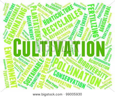 Cultivation Word Means Sow Grow And Farming