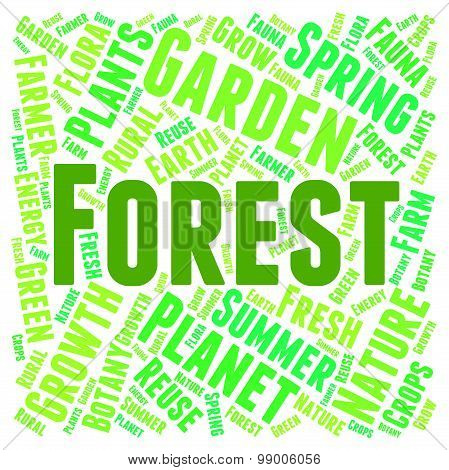 Forest Word Means Trees Copice And Park