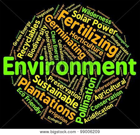 Environment Word Means Eco Systems And Ecosystem