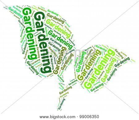 Gardening Word Indicates Outdoor Gardens And Words