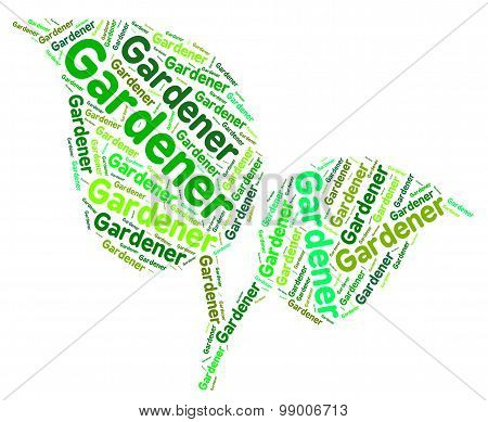 Gardener Word Shows Outside Backyard And Planting